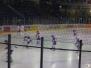 Jugend - Eishockey Straubing Tigers